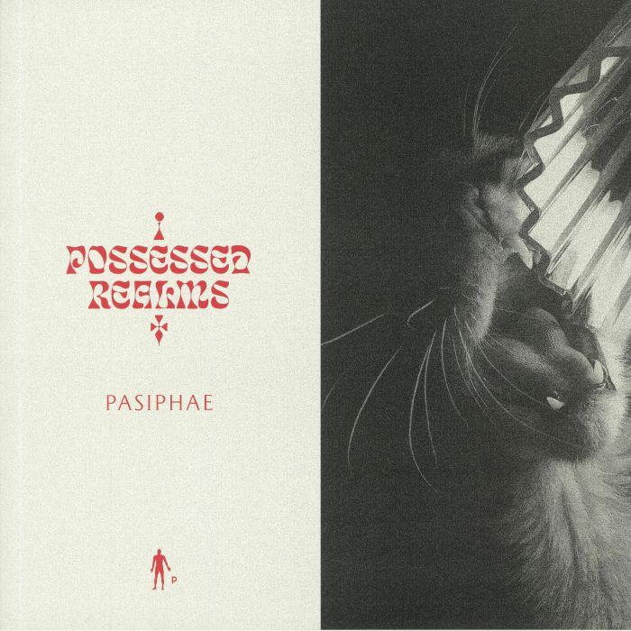 Possessed Realms