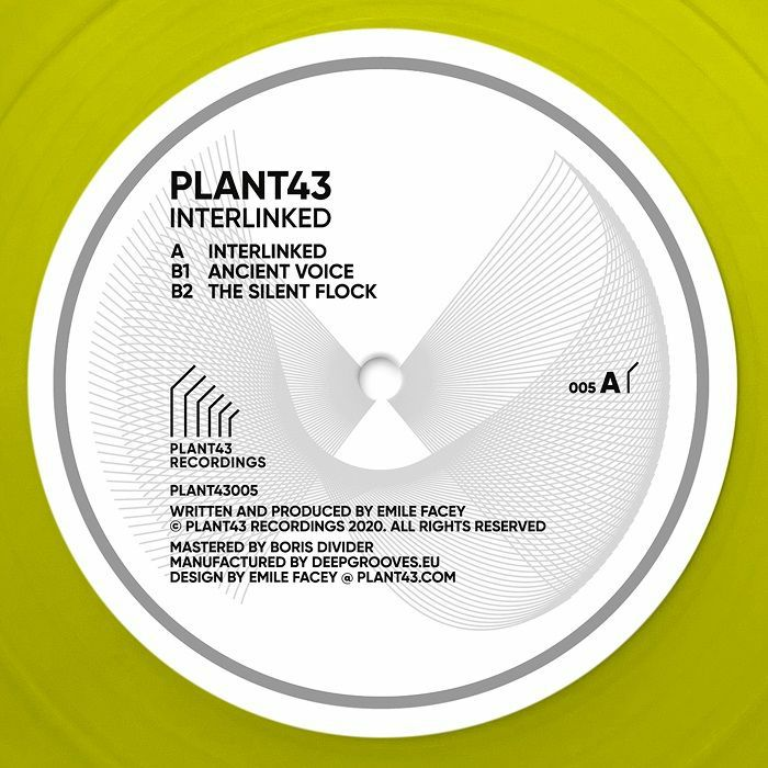 Plant43 Interlinked