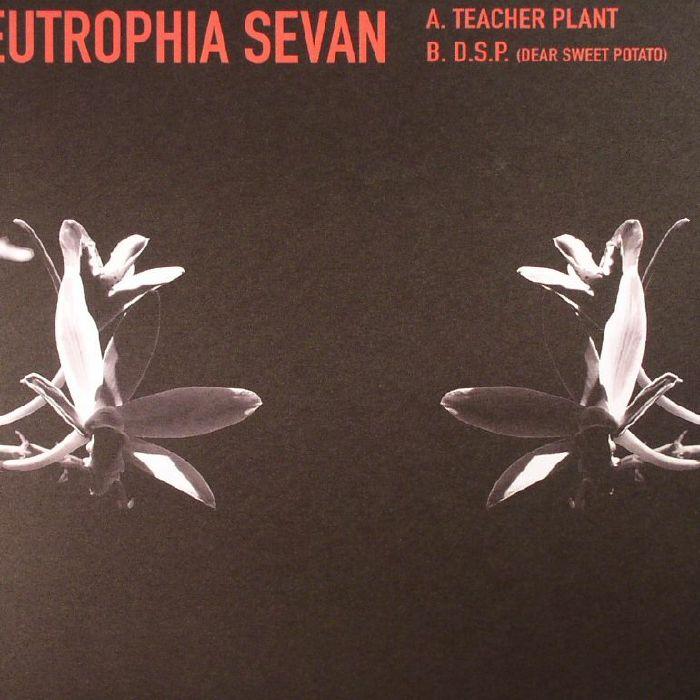 Eutrophia Sevan
