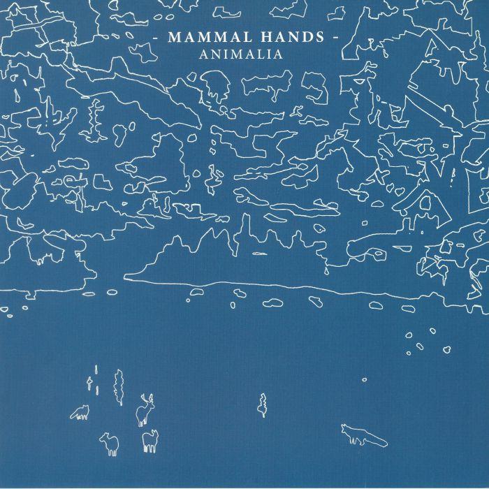 Mammal Hands Animalia