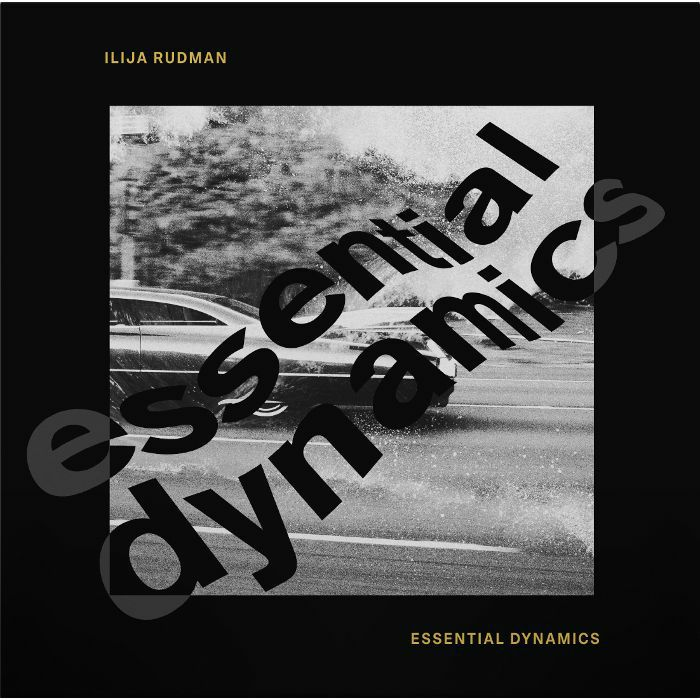 Essential Dynamics (feat Kai Alce, Ashley Beedle, Fred Everywhere remixes)