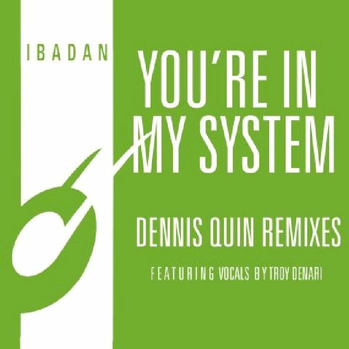 Youre In My System (Dennis Quin remixes)