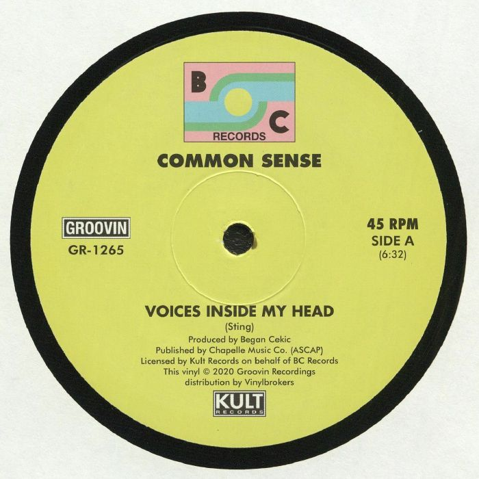 Common Sense Voices Inside My Head