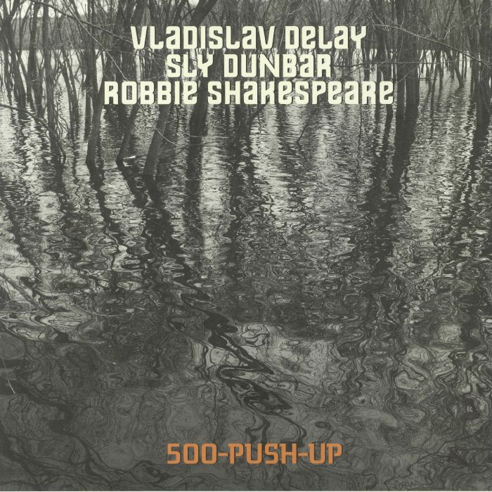 Vladislav Delay | Sly Dunbar | Robbie Shakespeare 500 Push Up